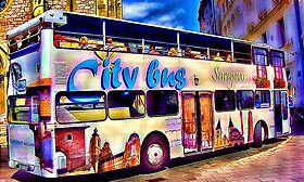 Sightseeing City Bus